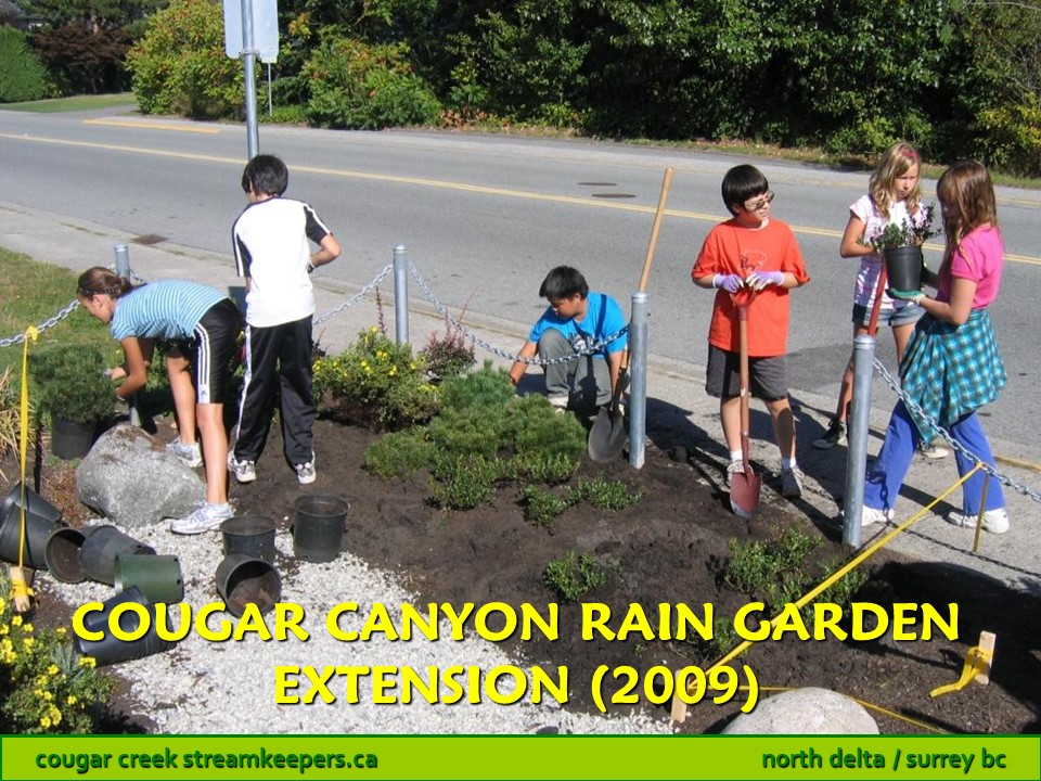 Cougar Canyon Rain Garden Extension