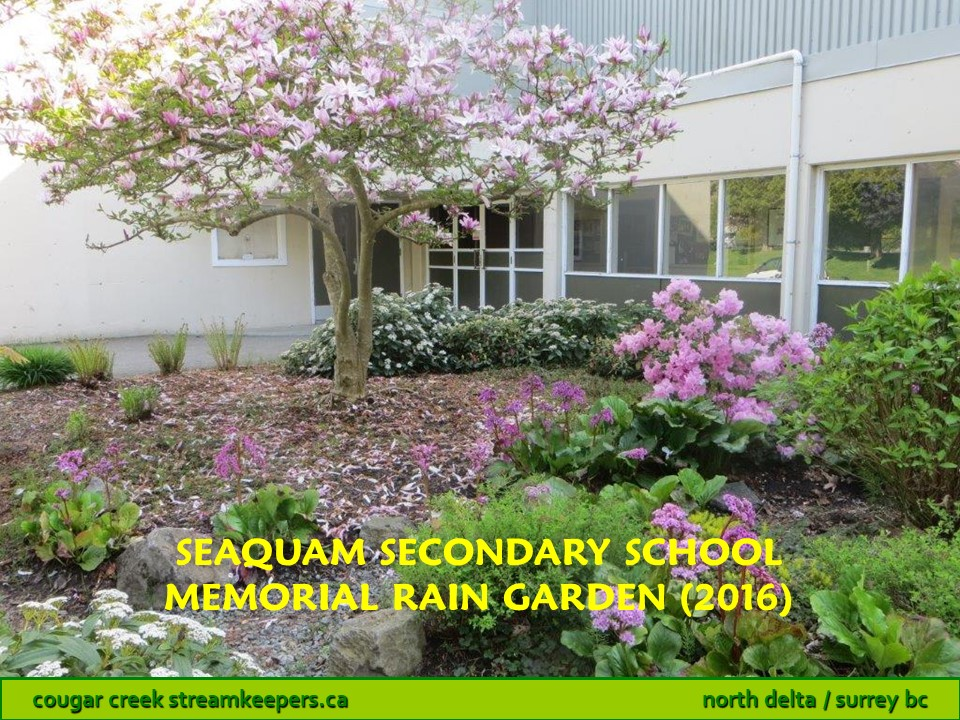 Seaquam Secondary School Memorial Rain Garden
